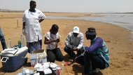 Analysing the water quality of Niger river with Akvo Caddisfly @ Koulikoro.