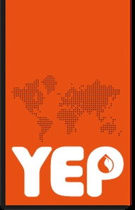 The Young Expert Programme