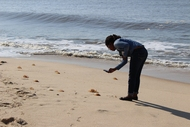 Taking a picture of washed up jellyfish in Beira, Mozambique.