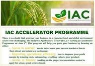IAC Accelerator Programme