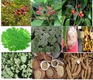 Ethiopian Indigenous foods