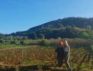 Meeting farmers in the field in Shan State, Myanmar