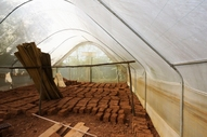 Greenhouses for brick production. Hard to eat.