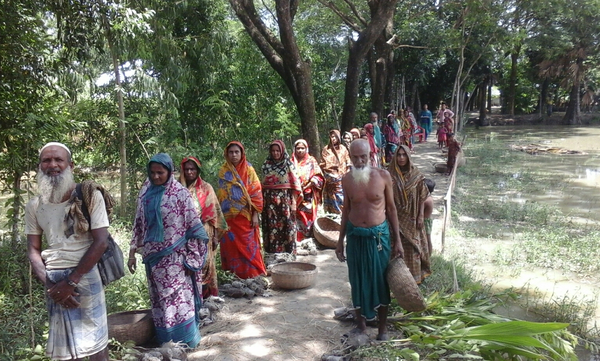 Tree plant distribution among marginal beneficiary