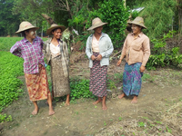 Cooperation of Livelihoods in Agricultural Business Project