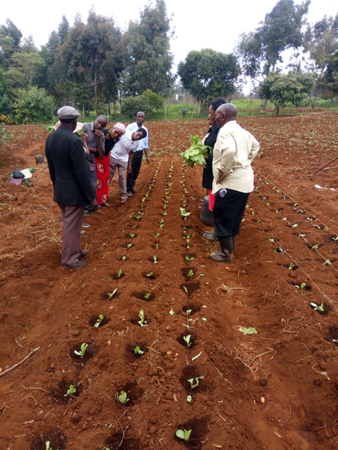 LImURU AGRIBIZ TRAINING