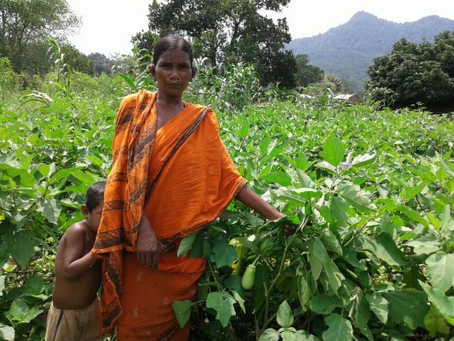 Natural farming farmer