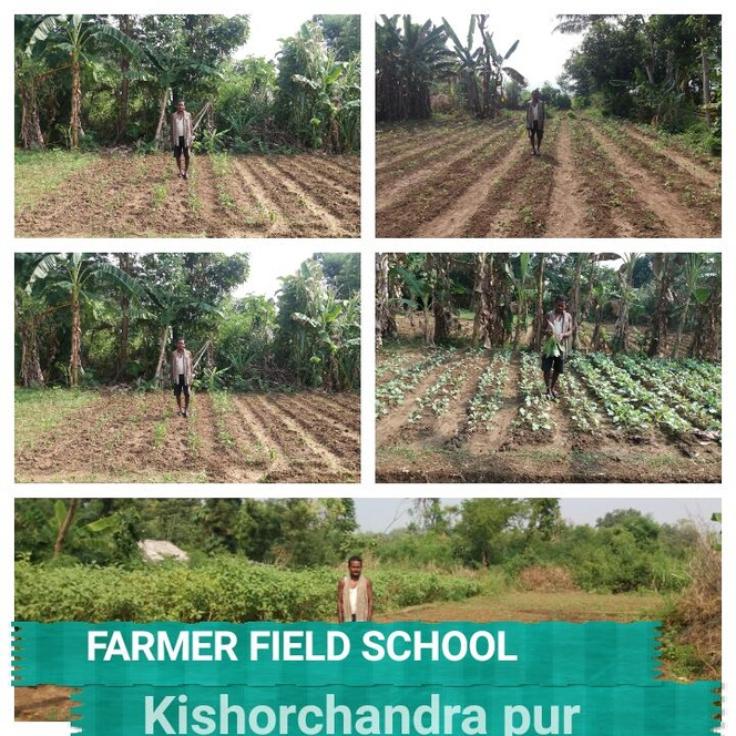 Farmers Field School