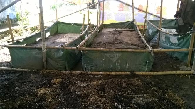 Vermi Compost Pit