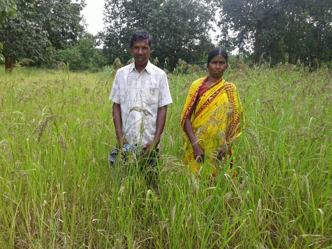 Climate smart farming through income enhance