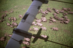An Aerial Survey of Laikipia