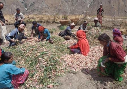 Mugu Integrated Livelihoods Project