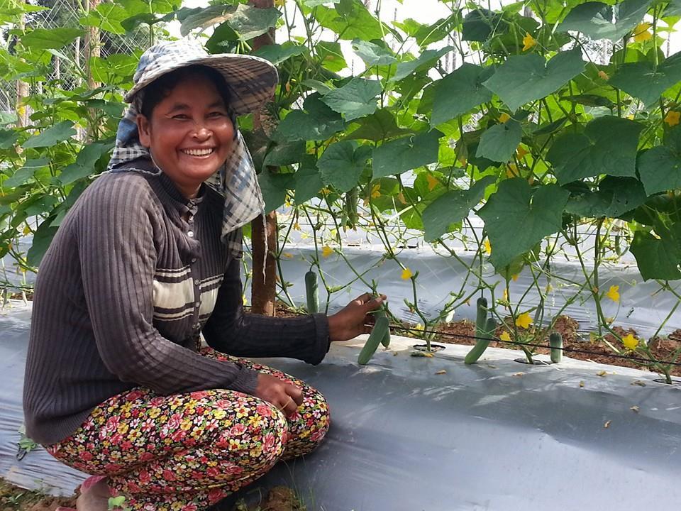 Cooperation for Women's Economic Development II
